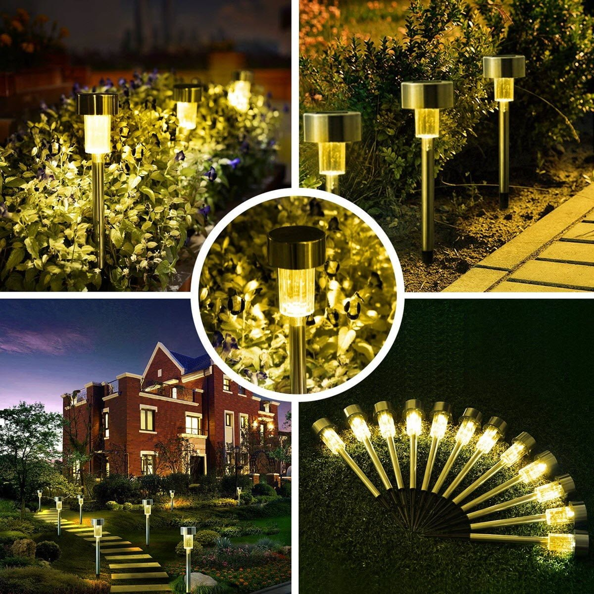 Light up your path with Solar Lights